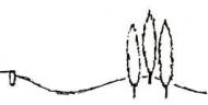 Logo Thomas Kreuder